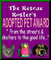 Rescue Pet Award