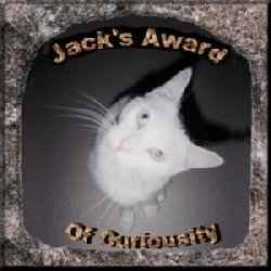 Jack's Award of Curiosity