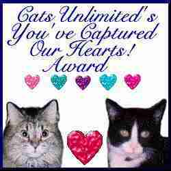 Cats Unlimited's You've Captured Our Hearts Award